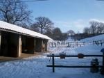 Stallung mit Blick auf Winterweide der INAs