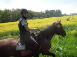 so macht reiten glücklich:-)