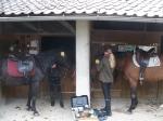 mit dem eigenen Putzzeug glänzend die Pferdchen natürlich besonders:-)
