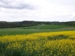 Landschaft bei Hirschberg