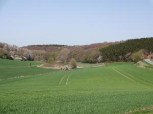 Taleinblick April - rechts unser Hof