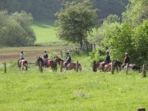 3 Std-Ritt mit Gastpferden- Ankunft zur Grasrast im schönen Robringhauser Tal