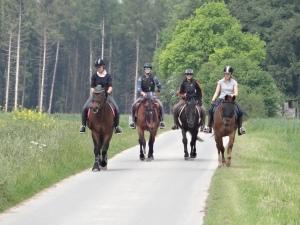 - coole Reiter auf der Zielgeraden -