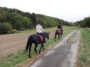 die Route bestach durch landschaftliche Reize und die Pferdchen waren gut drauf...